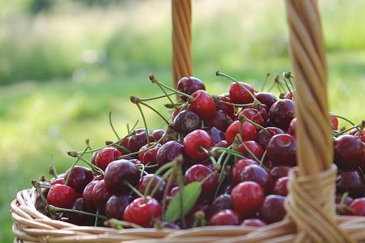 body_cherries