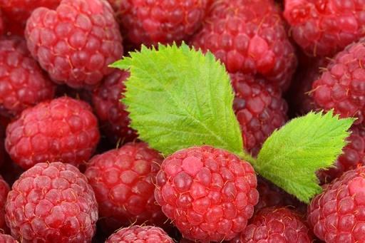 body_raspberry