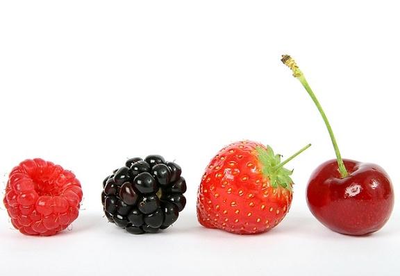feature_fruit